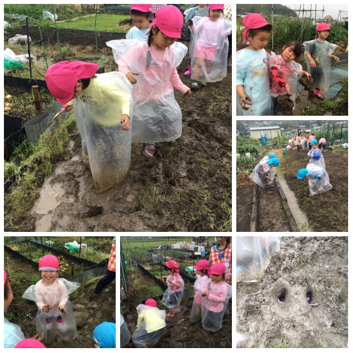 ☆畑準備&泥んこ作業☆認可保育所(みつよし園)3