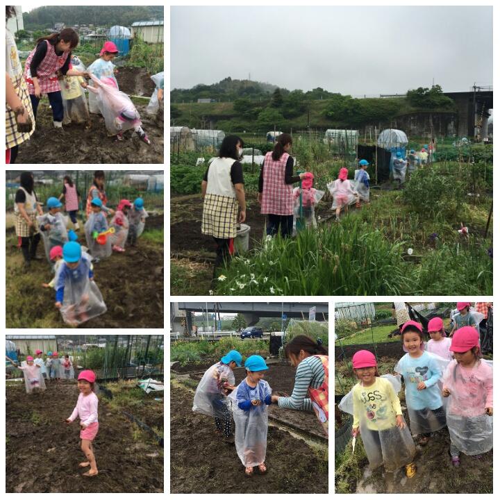 ☆畑準備&泥んこ作業☆認可保育所(みつよし園)2
